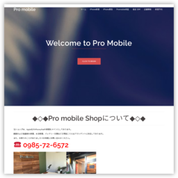 Pro mobile - iPhone買取 MAP